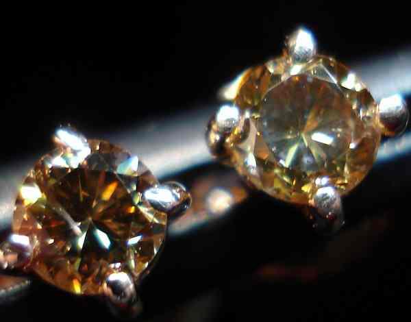 Chocolate Diamond Earrings Rose Gold Studs