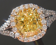 Yellow Diamond Ring: 1.50ct Fancy Intense Yellow SI1 Cushion Modified Brilliant Diamond GIA Split Shank Halo R5245
