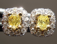 Yellow Diamond Earrings: .28cts Fancy Intense Yellow Oval Shape Diamond Halo Earrings R7295