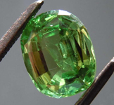 1.60ct Green Cushion Cut Tsavorite Garnet R8615