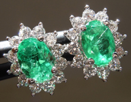 1.27cts Green Oval Emerald Earrings R9612