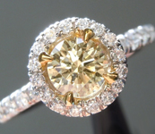 Brown Diamond Ring: .57ct Fancy Brownish Yellow I1 Round Brilliant Diamond Halo Ring GIA R6336