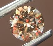 Brown Diamond Ring: .52ct Fancy Dark Yellowish Brown SI2 Round Brilliant Diamond Halo Ring GIA R6834