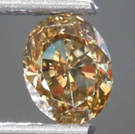 Loose Brown Diamond: .68ct Fancy Dark Brown Yellow VS1 Oval Diamond GIA R7570