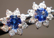 SOLD....Sapphire and Diamond Earrings: .49cts Blue Round Brilliant Sapphires with Diamond Halo R3298