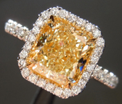 SOLD....Yellow Diamond Ring: 1.80ct Y-Z VVS2 Radiant Cut GIA Hand Forged Halo R5049
