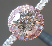 SOLD.....Brown Diamond Ring: .63ct S-T, Light Brown I1 Round Brilliant GIA Halo Ring R5923