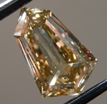 1.23ct Brown SI2 Shield Diamond R9749